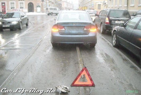Неожиданное препятствие (фото)