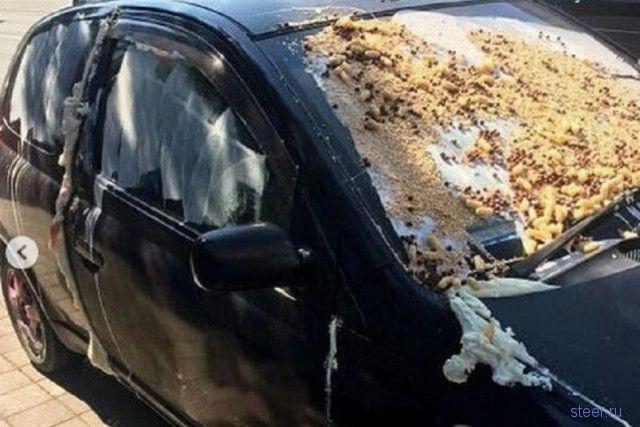 Жители Краснодара жестко наказали горе-парковщика