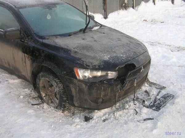 Собаки разорвали автомобиль (фото)