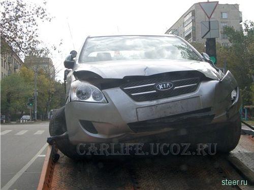 Автомобиль столкнулся с лосем
