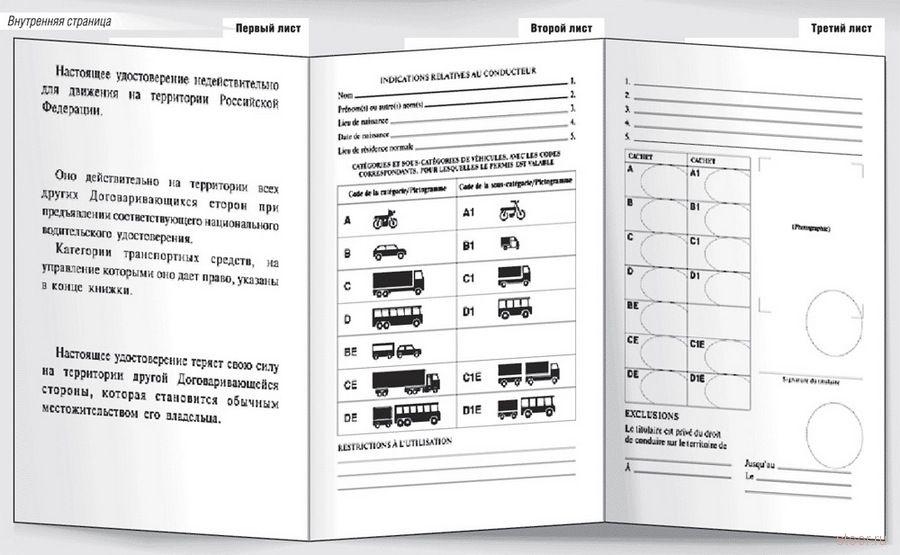 Новые водительские права. Образец (фото)