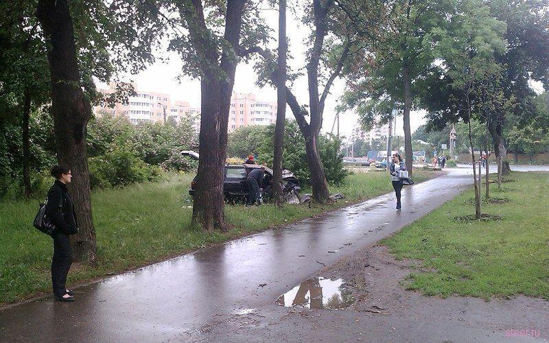 Долетался (фото)