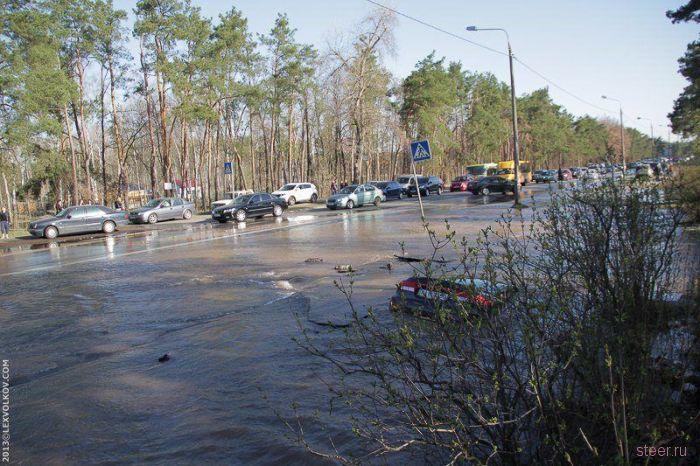 В Киеве асфальт украл машину
