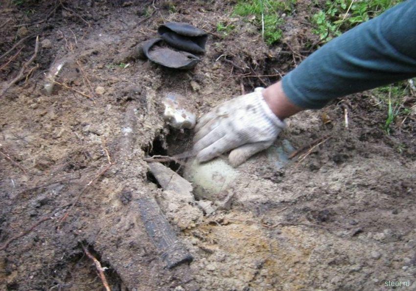Раскопали