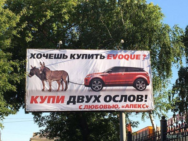 «Купи двух ослов!» Владелица дорогого автомобиля объявила войну автоцентру