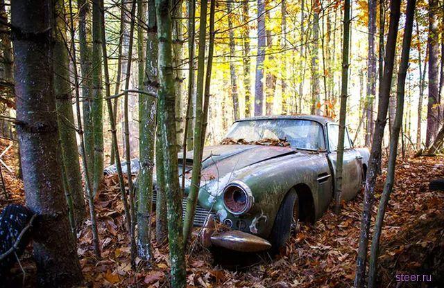 Ржавый Астон Мартин из леса за 400 000 долларов