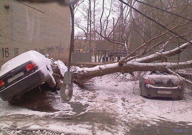 http://steer.ru/pic/241108/uragan/image_0.jpg