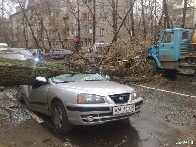 http://steer.ru/pic/241108/uragan/image_1.jpg