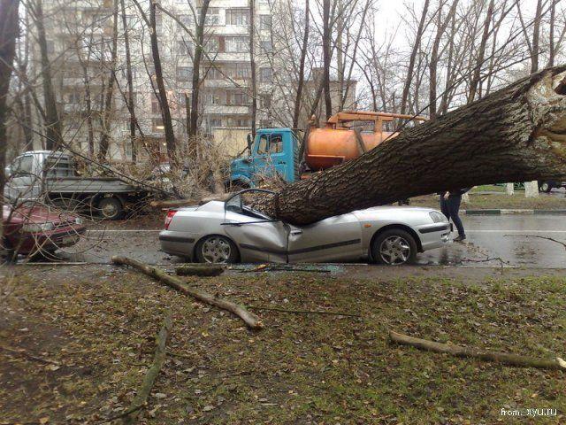 http://steer.ru/pic/241108/uragan/image_2.jpg