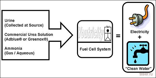 Изготовлен прототип топливного элемента, работающего на моче (фото)